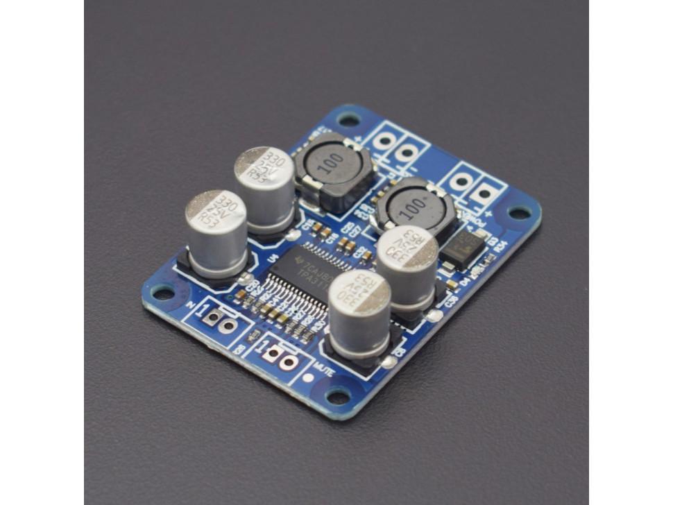 TPA3118 BTL 60W DC 12V-24V Mono Digital Audio Power Amplifier Board