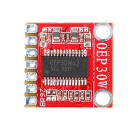 Amplifier Mono Digital Module OEP30W Single Channel